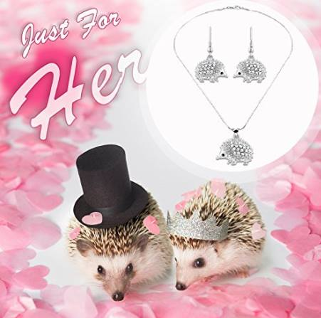 Hedgehog Earring and Necklace Set